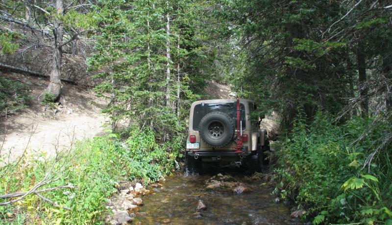 Name:  Bill in Jenny Creek 2.jpg Views: 97 Size:  103.2 KB
